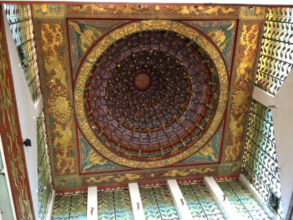 spider dome 2