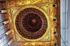 spider dome